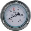 LT-YZ-150ZT-BF不锈钢压力表