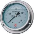 LT-YTN-100ZT-BF不锈钢压力表